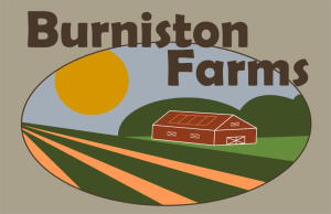burniston logo